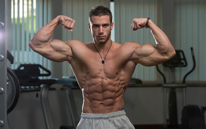 Ectomorph Muscle Building: Nutrition And Training Basics For Muscle Growth Muscle & Strength