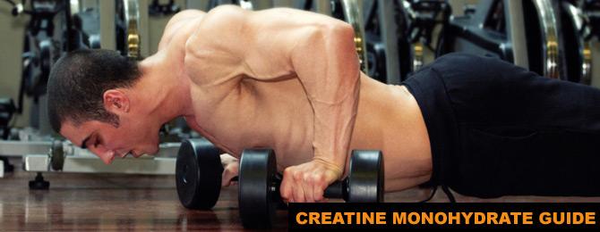 Creatine Monohydrate Expert Guide