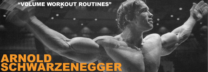 Arnold Schwarzenegger Volume Workout Routines