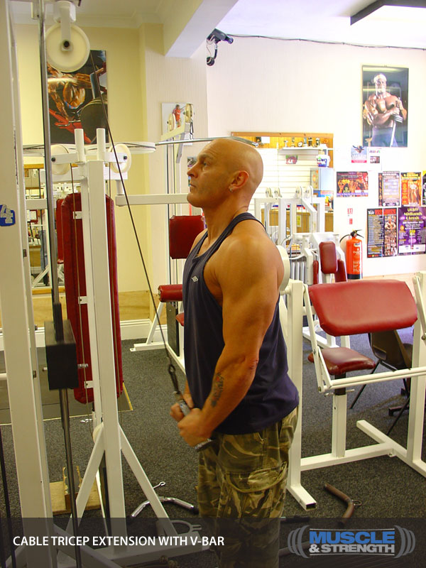 Cable Tricep Extension With V-Bar Video Exercise Guide ...