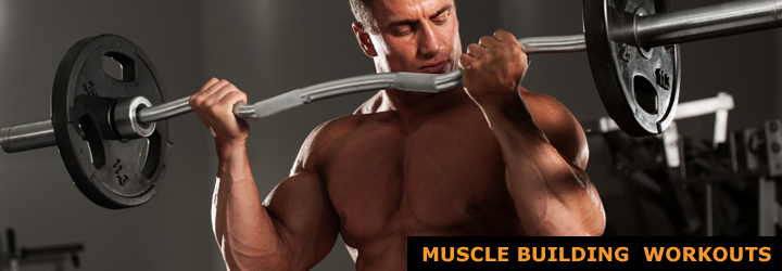 Muscle Building Workouts