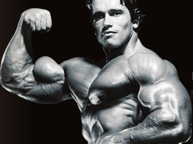 strongest muscle building steroid