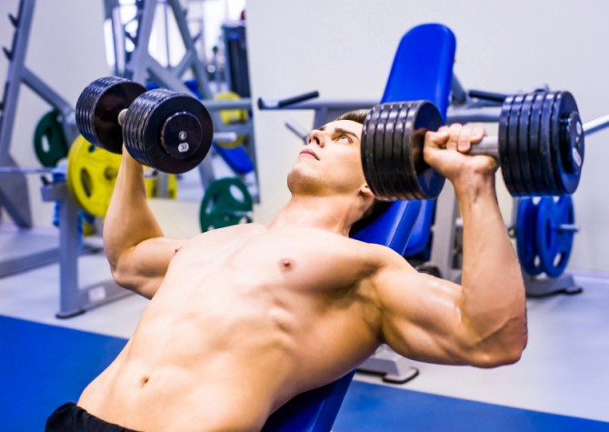 Muscle building and fat loss decoded