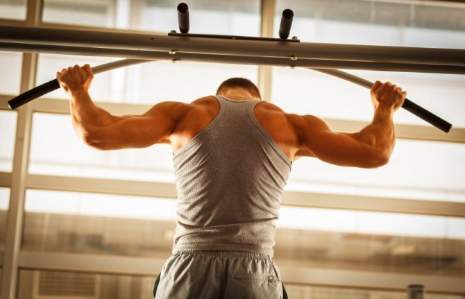 how to get big biceps without gym