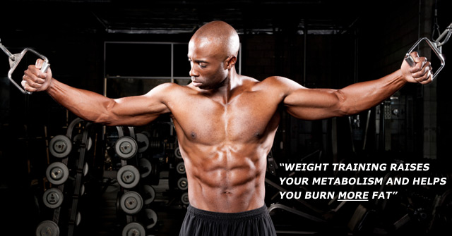 Expert fat loss guide learn how to lose fat muscle for Fish oil weight lifting
