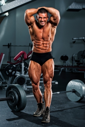 Shredded Bodybuilder