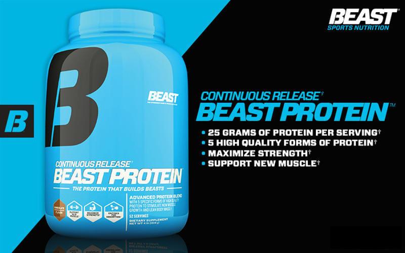 body beast nutrition book pdf