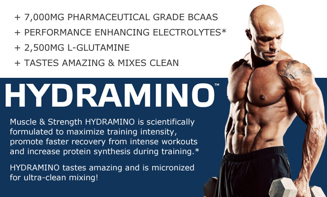 Muscle & Strength HYDRAMINO